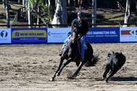 WP_Campdraft_543